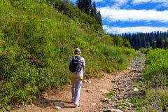 Tourist mit einem Rucksack, der oben der Hügel geht stockfotos