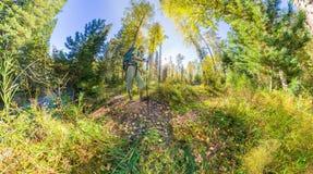 Tourist mit einem Rucksack gehend durch den Wald mit Felsen Stockbilder