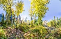 Tourist mit einem Rucksack gehend durch den Wald mit Felsen Stockfotos