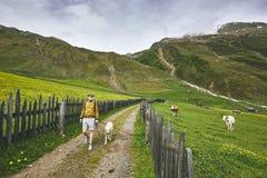 Tourist mit Hund in der Landschaft Lizenzfreie Stockfotos