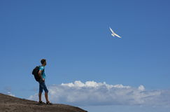 Tourist on mountain & flying bird. Tourist is on mountain above clouds and enjoying watching on flying bird. The beautiful blue sky is free for your text Royalty Free Stock Image