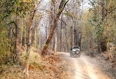 Tourist moving in Safari jeep in Pench Tiger reserve. SEONI, INDIA-JUNE 26: Tourist moving in Safari jeep during game drive in Pench Tiger Reserve, Seoni, India royalty free stock photography