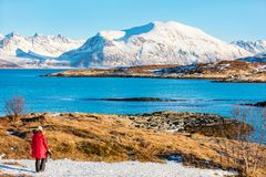 Tourist in Northern Norway. Back view of young woman enjoying breathtaking fjords winter landscape of Northern Norway Stock Image
