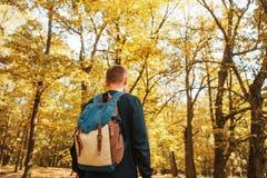 Tourist oder Reisender mit einem Rucksack im Herbstwald stockfotografie
