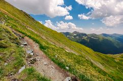 Tourist path through grassy slope of Fagaras mount. Beautiful summer landscape under the cloudy sky Royalty Free Stock Images