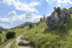 Tourist path in National park Mala Fatra Stock Photos