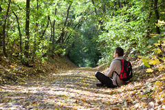 Tourist is on a path strewn with yellow leaves Royalty Free Stock Photography