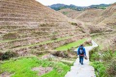 Tourist on path between terraced fields in Dazhai Stock Image