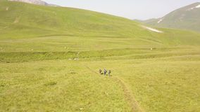Tourist people hiking on summer meadow in green mountain valley aerial view stock footage