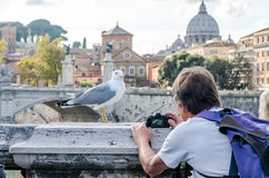 Tourist photographer takes pictures on the bridge over the River Tiber in Rome near the Vatican dome seagull pictured Royalty Free Stock Photography