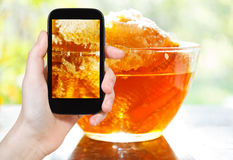 Tourist photographs of fresh honey in comb Royalty Free Stock Image