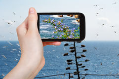 Tourist photographs of mediterranean sea, Spain Stock Photos