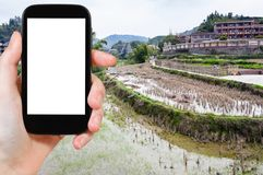 Tourist photographs rice fields in Chengyang. Travel concept - tourist photographs terraced rice fields in Chengyang village of Sanjiang Dong Autonomous County Royalty Free Stock Photo
