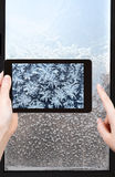 Tourist photographs of snowflakes and frost Royalty Free Stock Image