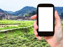 Tourist photographs tea and rice fields in China. Travel concept - tourist photographs tea and rice fields near irrigation canal in Chengyang village of Sanjiang Stock Images