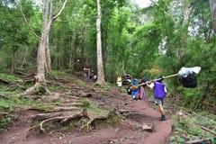 Tourist at phuKradueng national park thailand Royalty Free Stock Photos