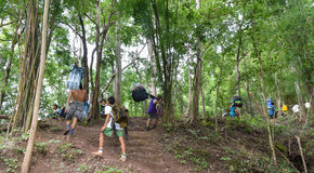 Tourist at phuKradueng national park thailand Royalty Free Stock Image