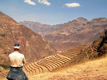 Tourist Pisac Inca Site Incan Ruins Peru Terracing Stock Photography