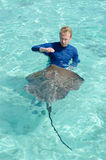 Tourist playing with stingray in a lagoon Royalty Free Stock Image