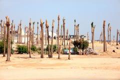 Tourist resort, unfinished Royalty Free Stock Photo