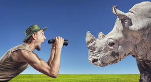Tourist and Rhino Royalty Free Stock Images