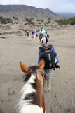 The tourist ride horse are going to Bromo mountain Stock Photography