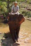 Tourist rides an elephant Stock Photo