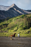 Tourist riding horse to Bromo Royalty Free Stock Images