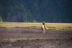 Tourist riding horse walking Royalty Free Stock Image