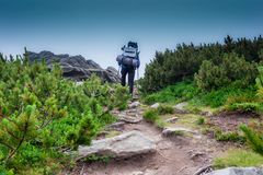 Ascent of a tourist. The tourist rises to the top of the mountains stock photo
