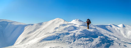 Tourist rises the top. Tourist rises to the top of the snowy ridge. The sky is clear, sunny. Winter. Ukrainian Carpathian Mountains stock photos