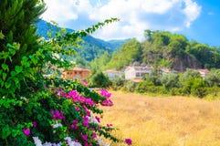 Tourist Riviera mit Blütenpflanzen, Sonne und Hotels auf dem Hintergrund von bewaldeten Bergen stockfotos