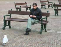 Tourist rolls shag cigarette, Binnenhof in The Hague, Netherlands  Stock Photo