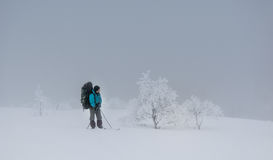 Tourist in Russian Lapland, Kola Peninsula Stock Images