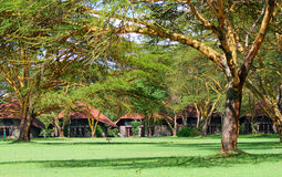 Tourist's resort in a woods of Africa Royalty Free Stock Photography