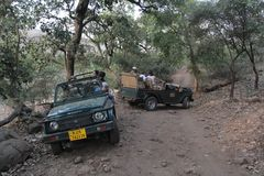 Tourist Safari jeeps in Ranthambhore forest reserve park royalty free stock image