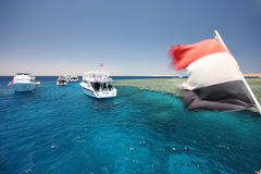 Tourist ships royalty free stock images