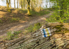 Tourist sign on the fallen trunk of an old tree - Poland Stock Photography