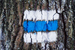 Tourist sign on the tree Stock Photos