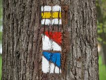 Tourist signposting on the bark of a tree. South Bohemia royalty free stock photos