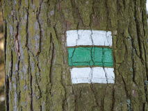 Tourist signposting on the bark of a tree Royalty Free Stock Photo