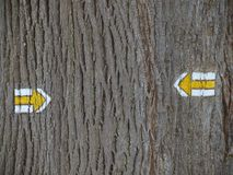 Tourist signposting on the bark of a tree stock image