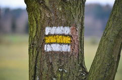 Tourist signposting on the bark of a tree Stock Photography