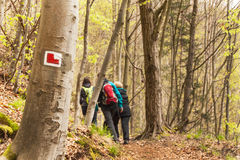 Tourist signs in the Czech Republic. Hiking trail through the woods. Family trip. Stock Images