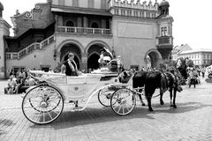 Tourist sit in carriage with horses in Krakow, Poland Royalty Free Stock Image