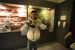 Tourist with snake at oslo reptile museum stock image
