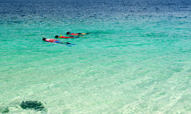 Tourist snorkeling in clear sea in Lipe Island, Thailand Royalty Free Stock Photo