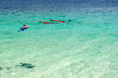 Tourist snorkeling in clear sea in Lipe Island, Thailand Royalty Free Stock Photos