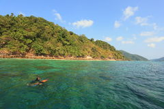 Tourist snorkeling coral diving on surface green water sea,Mu Ko Surin National Park ,Thailand Royalty Free Stock Photo