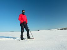 Tourist with snowshoes walk in snowy drift. Sunny freeze weather. Hiker in pink sports jacket and black trekking trousers snowshoeing in powder snow Stock Photo